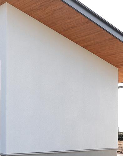 リシン吹き付けの外壁(駐車場の壁)