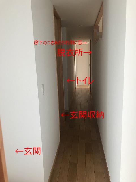 中廊下の扉を全部閉めた場合の写真