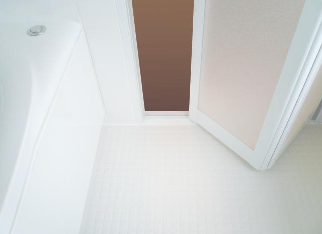 浴室入口の折れ戸