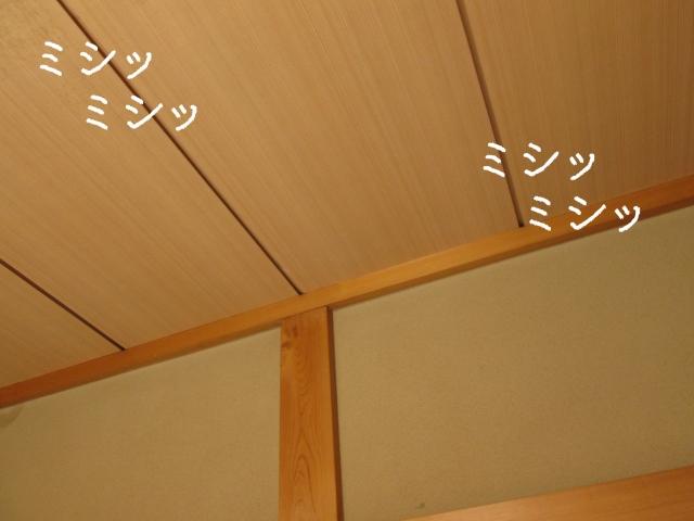 天井がうるさい