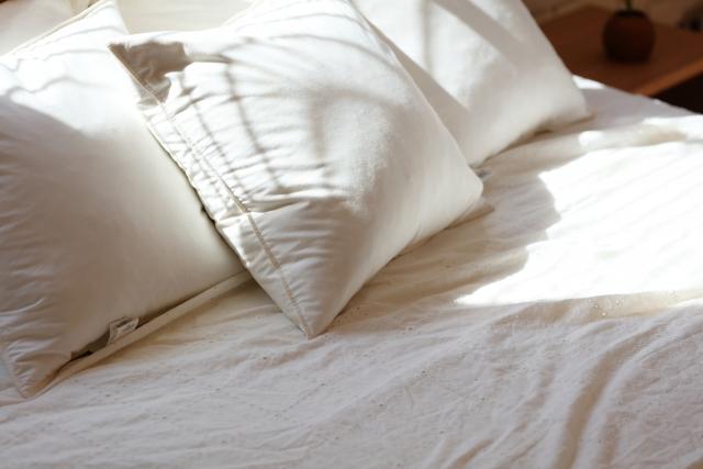 日当たりの良いベッド