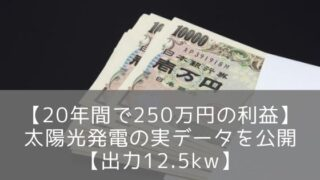 【20年間で250万円の利益】太陽光発電の実データを公開【出力12.5kw】