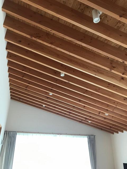 垂木現しの勾配天井