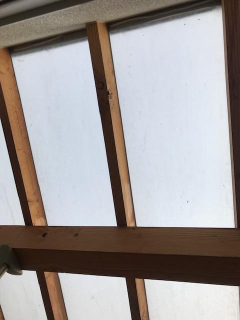 外物干し場のポリカーボネート屋根